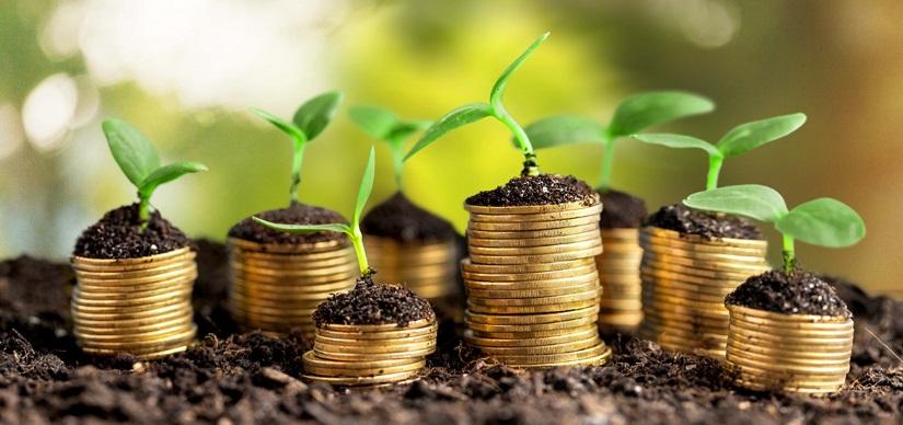 Експерт розповів, як розвивати волинські ОТГ і як привабити інвестора