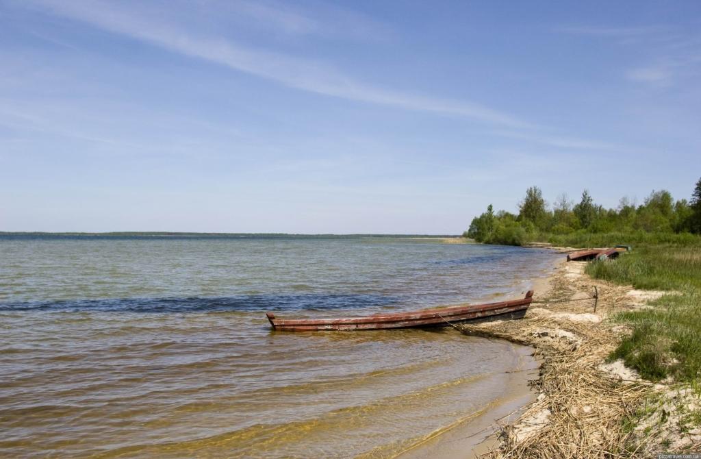 Відновлюють популяцію риб Шацьких озер