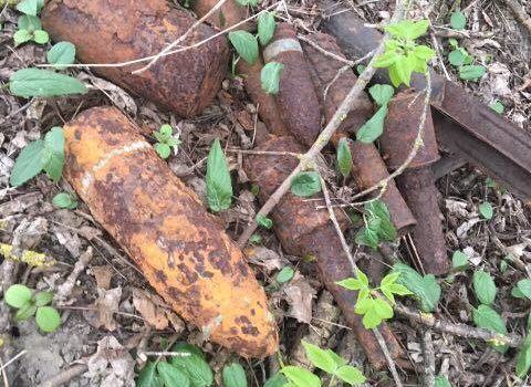 Волинянин у лісі знайшов боєприпаси