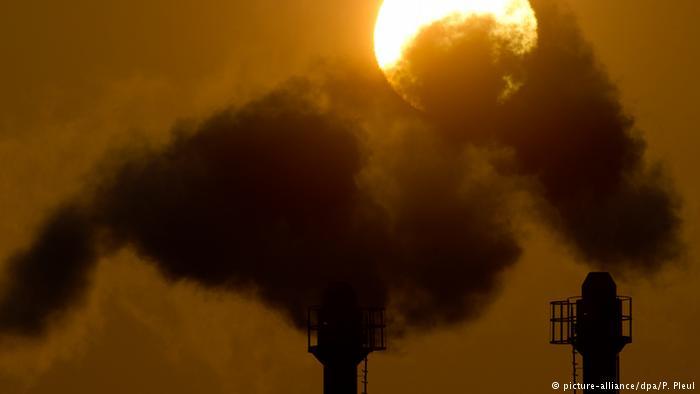 Суд зобов'язав владу Нідерландів скоротити викиди парникових газів на 25 %