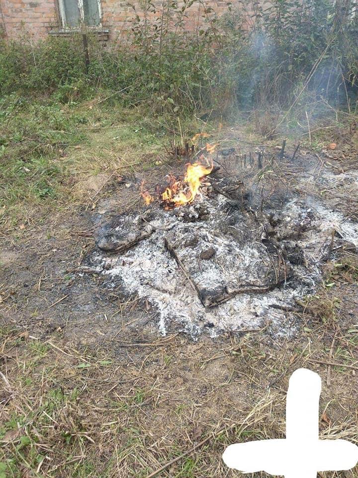 Лучани продовжують палити сухостій та гілля