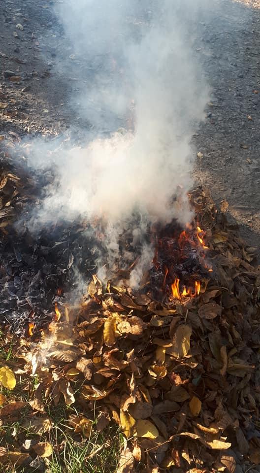 Муніципали нагадують лучанам про небезпеку спалювання сухого листя