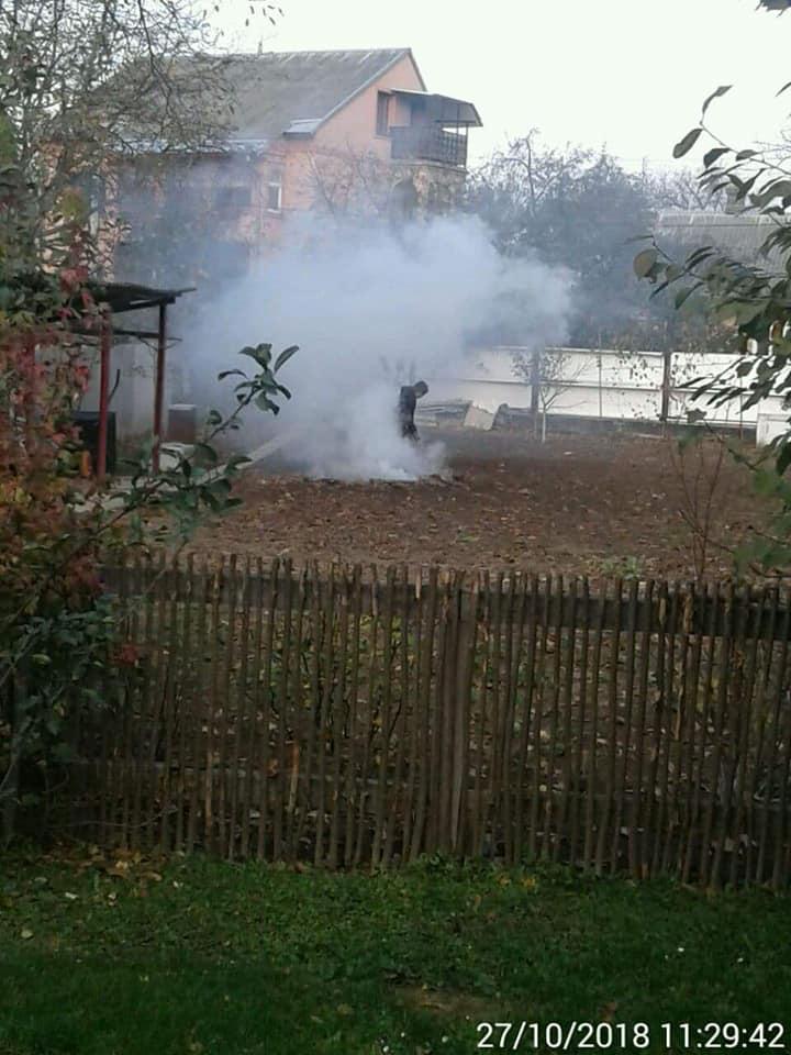 Покарали лучанку, яка спалювала суху траву. ФОТО