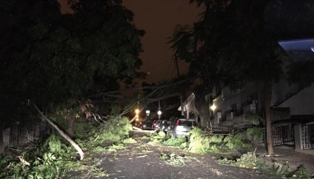 Вирвані дерева, пошкоджені авто та будинки: ураган «Леслі» накрив Португалію