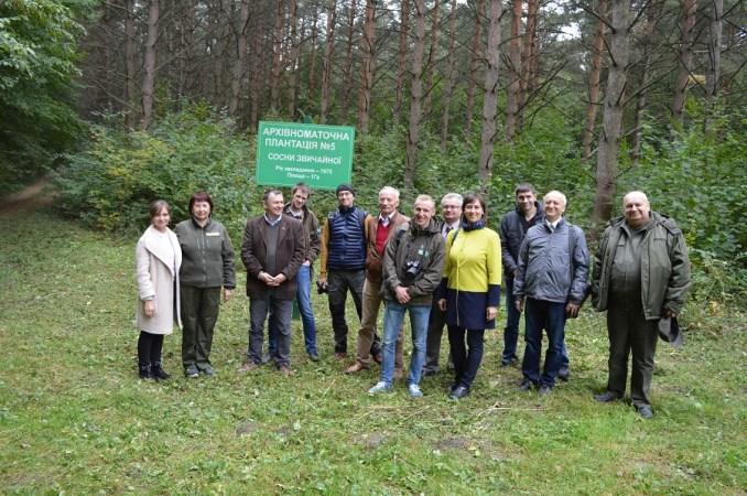 Польські науковці на Волині вивчали досвід вирощення елітних дерев. ФОТО