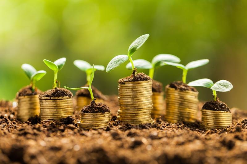 Завдяки громадянам-землевласникам громади Волині отримали майже 54 мільйони гривень