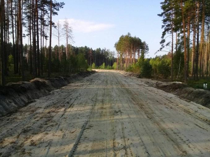 Розповіли про економічне та соціальне значення лісових доріг Волині