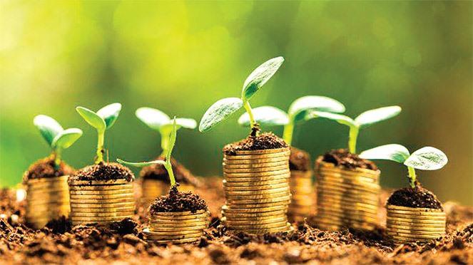 Місцеві громади Волині отримали 259 мільйонів гривень плати за землю