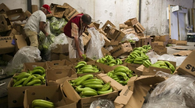 В Іспанії вилучили шість тонн кокаїну, захованого в бананах