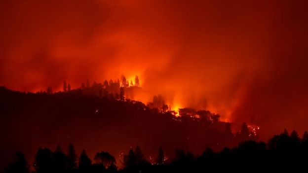 Пожежі у Каліфорнії забрали життя 25 людей