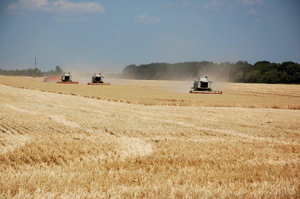 Сільськогосподарські товаровиробники Волині виробили валової продукції на 6,5 мільярда гривень