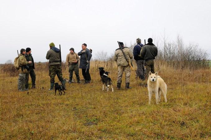 На волинських мисливців склали 43 протоколи за порушення правил полювання