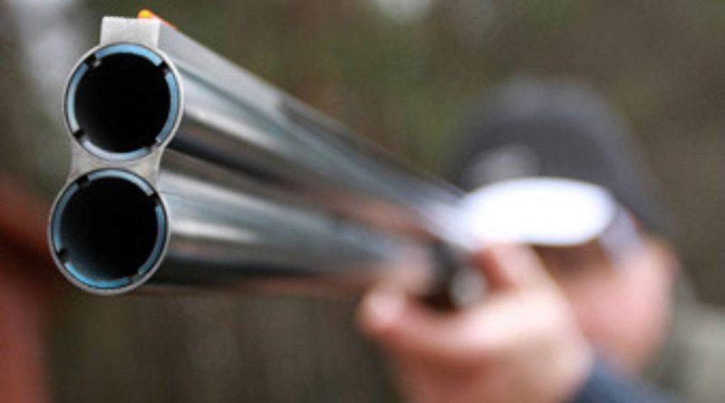 На Любешівщині браконьєри застрелили червонокнижну тварину
