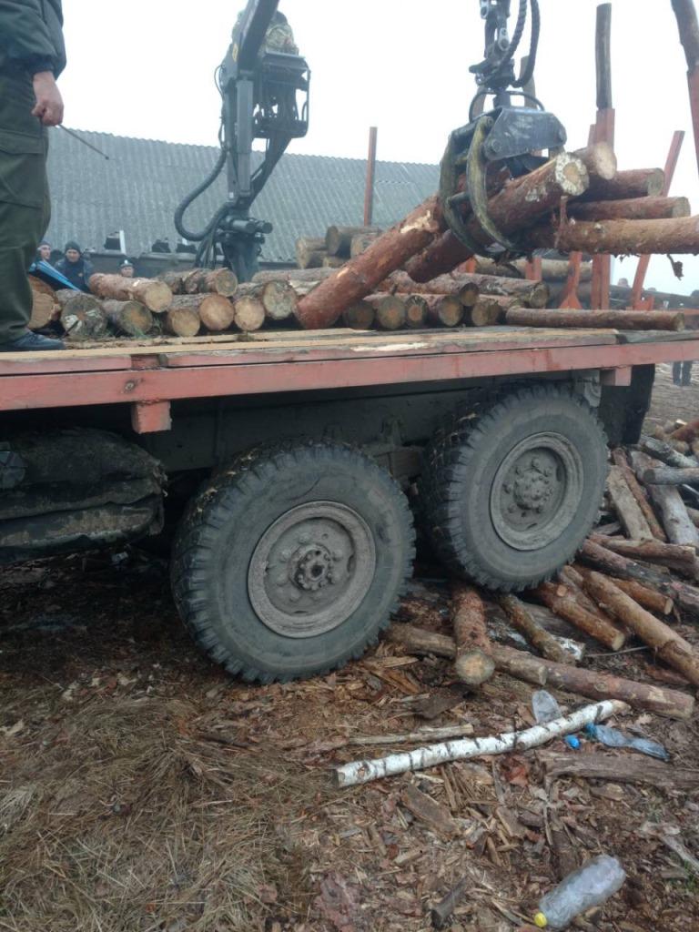 На Волині вилучили незаконну лісопродукцію. ФОТО