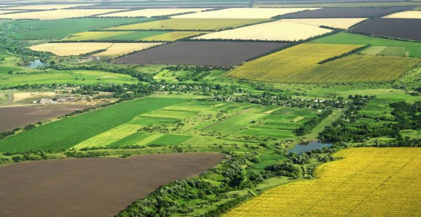 На Волині громаді повернуть землю вартістю понад 11 мільйонів гривень