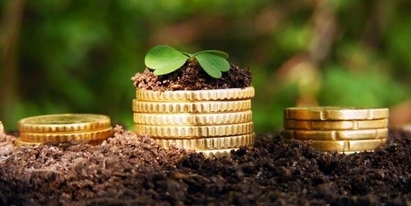 Громади Волині отримали понад 320 мільйонів гривень плати за землю