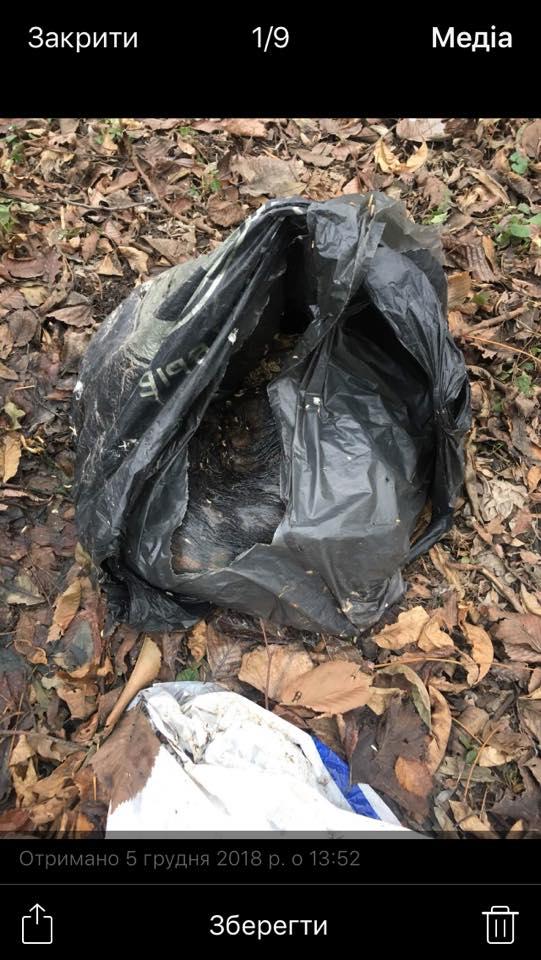У Нововолинську знайшли пакети з трупами тварин. ФОТО 18+