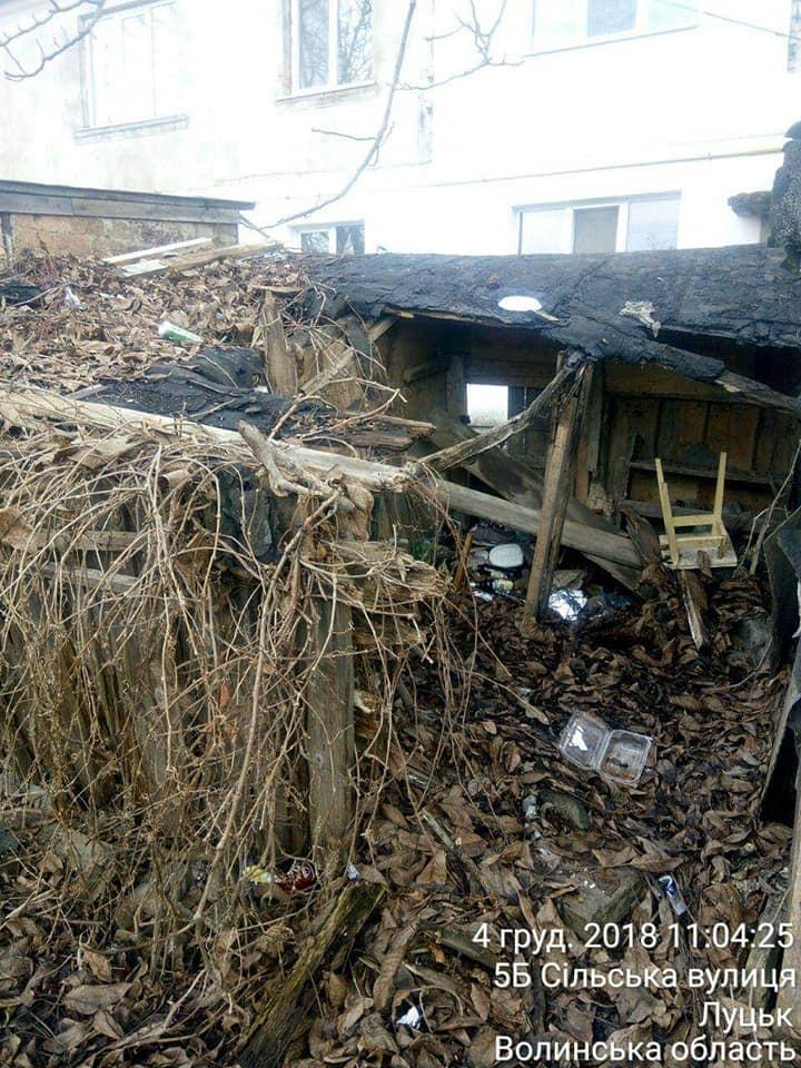 Луцькі муніципали продовжують демонтаж сараїв. ФОТО