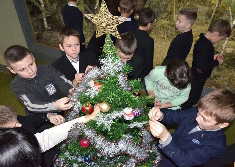 Луцьким школярам розповіли, чому ялинка стала символом Різдва