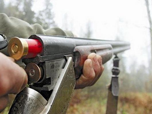 На Волині  у лісі знайшли рушниці  та зловили браконьєра
