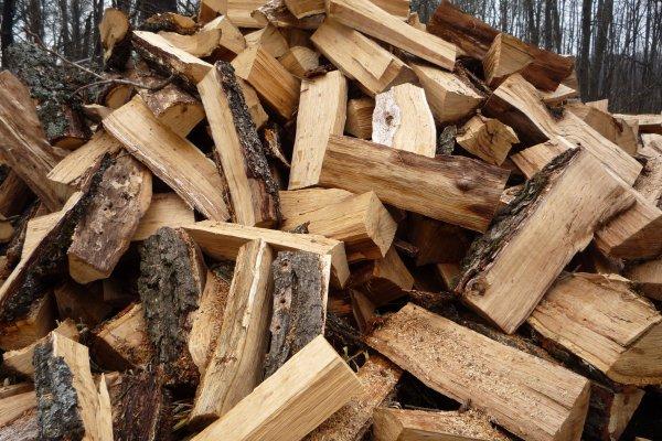 Куди звертатися волинянам, аби придбати в лісництві дрова