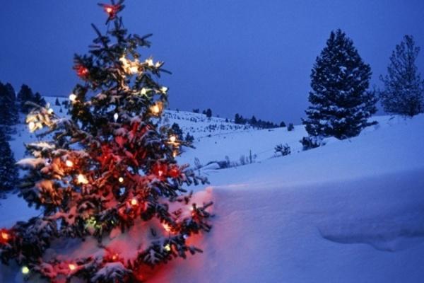 Синоптики дали новорічний прогноз
