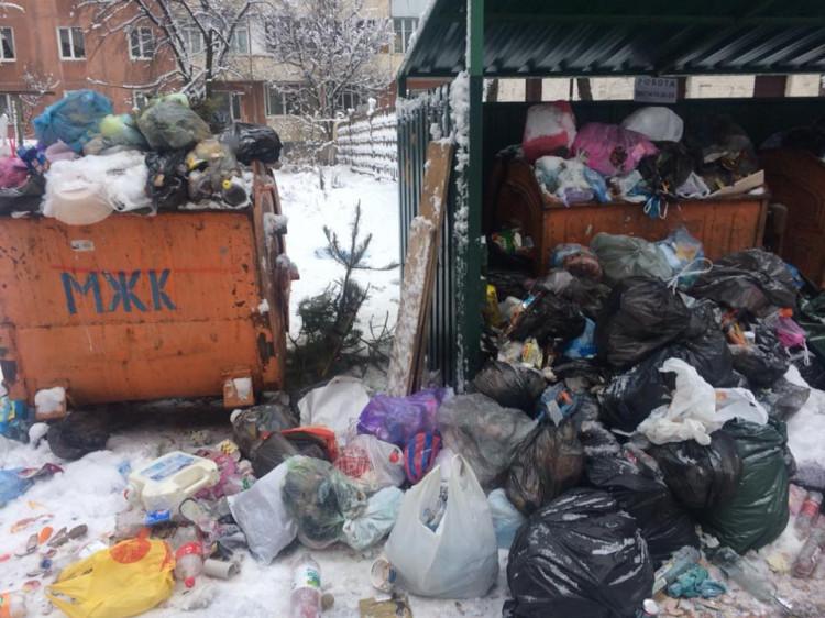 У Луцьку збираються витратити 1,5 мільйона гривень на збирання сміття