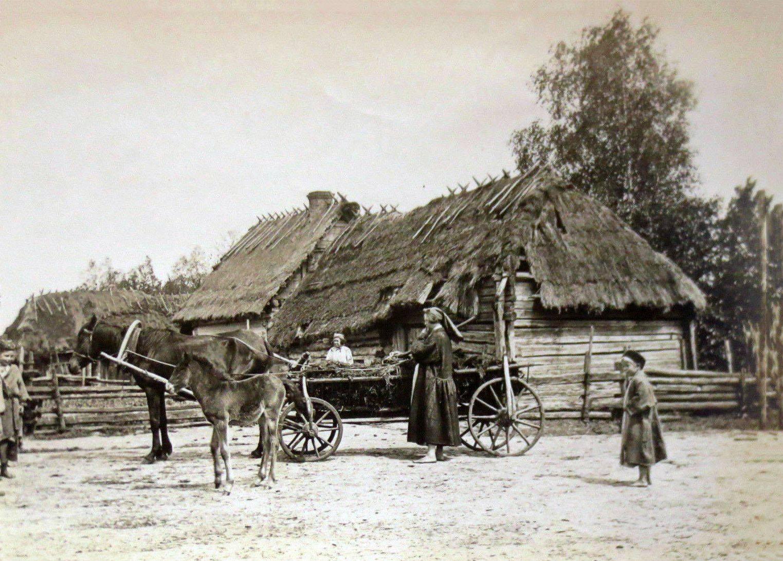 Волинське село на світлинах 1916 року. ФОТО