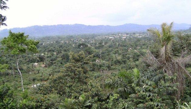У Конго виявили поховання щонайменше 890 жертв міжетнічного конфлікту