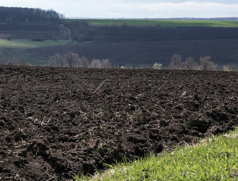 Прокуратура вимагатиме повернення землі громаді Княгининівської сільради
