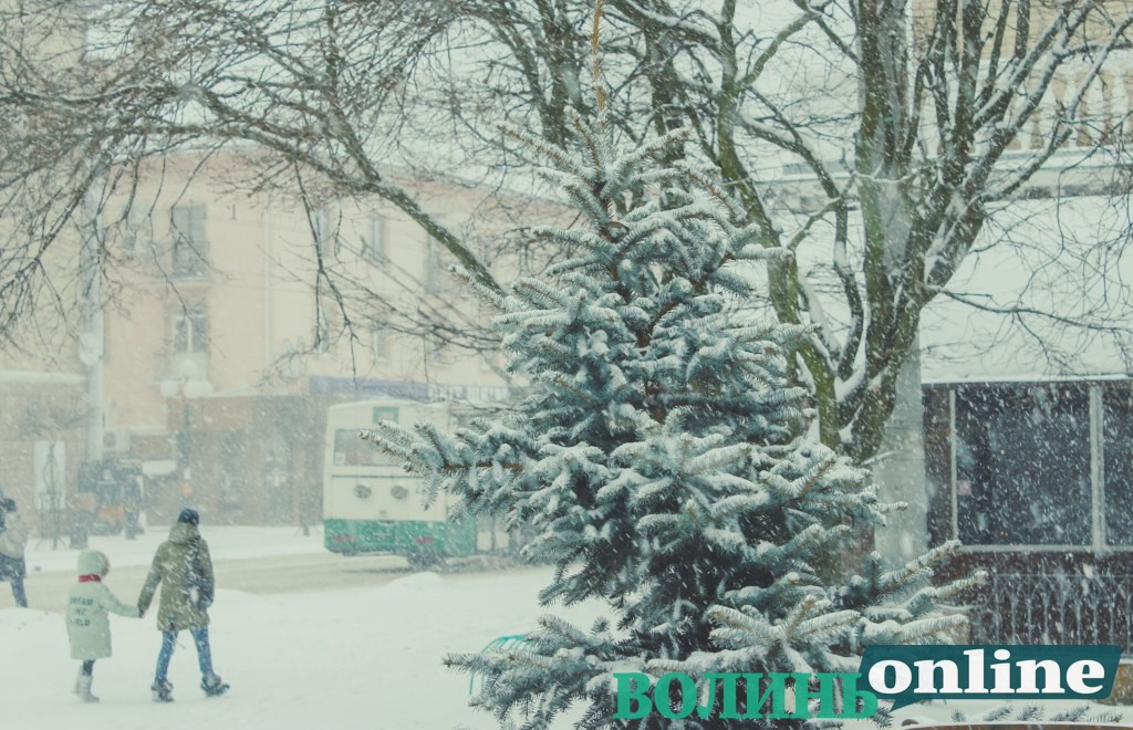 Січневий проспект Волі крізь снігову завісу. ФОТОРЕПОРТАЖ