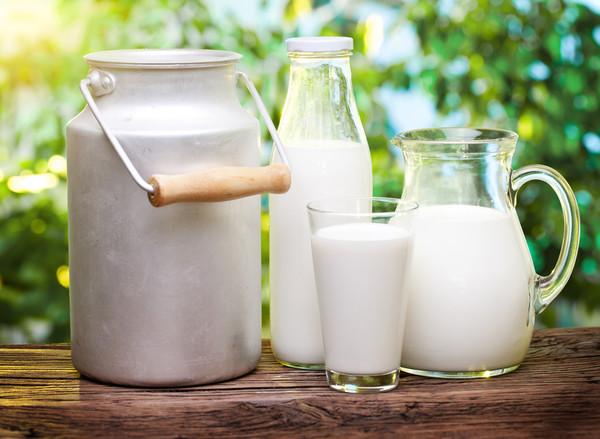 Назвали три країни, до яких Україна експортує найбільше молочної продукції