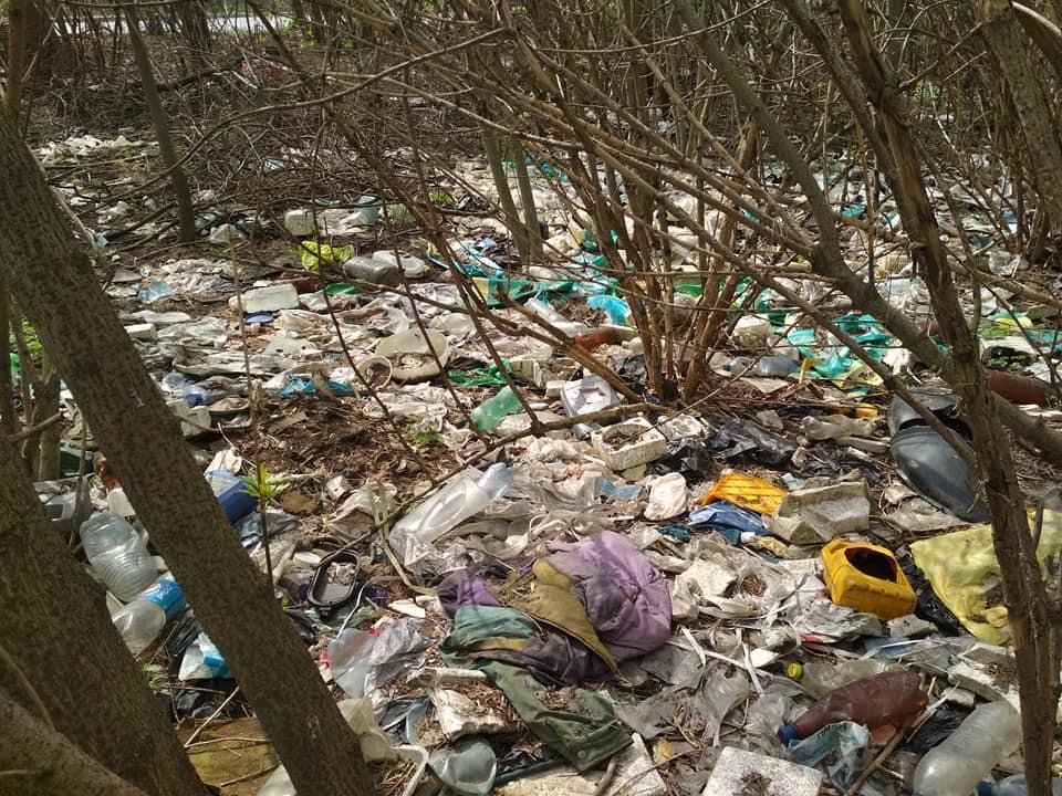 Луцькрада витратить на послуги зі збирання розкиданого сміття 1,4 мільйона гривень