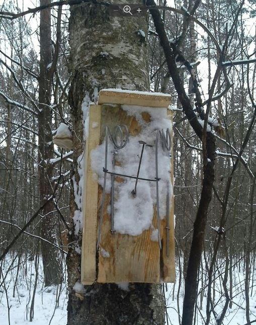 На Маневиччині за одну добу виявили три випадки незаконного полювання
