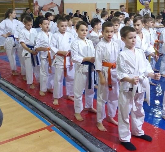 Юні каратисти з Волині здобули перемогу на чемпіонаті України