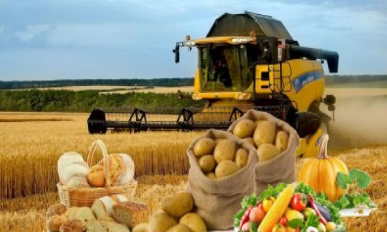 Скільки аграрної продукції надійшло на переробні підприємства Волині