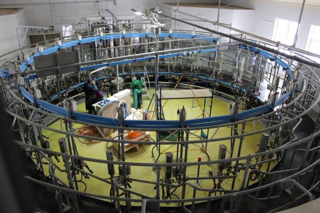 На Волині триває будівництво сучасного молочного комплексу. ФОТО