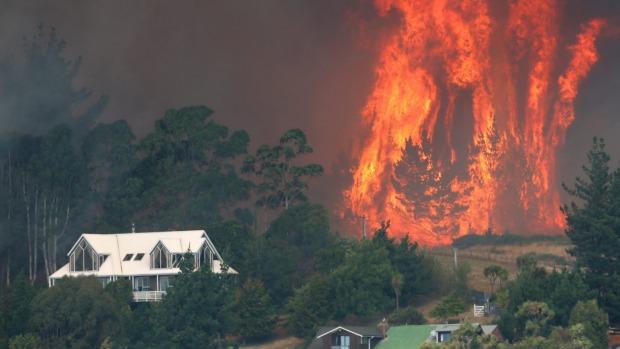 У Новій Зеландії внаслідок лісової пожежі евакуювали тисячі людей