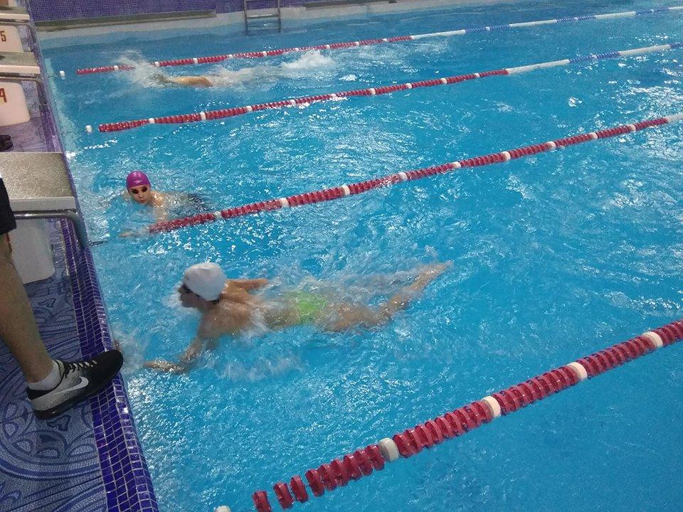 Юні плавці перемогли на зимовому чемпіонаті Волинської області. ФОТО