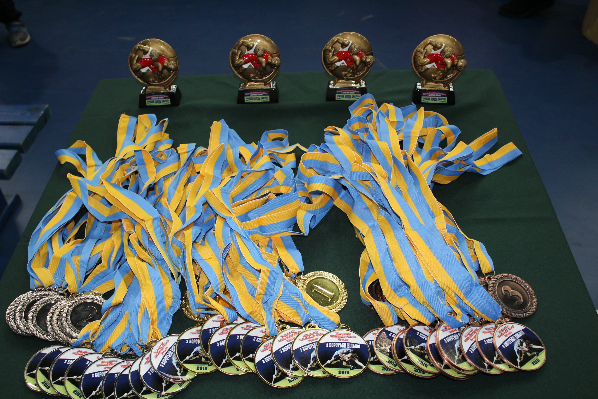 У Луцьку відбувся відкритий чемпіонат з вільної боротьби. ФОТО