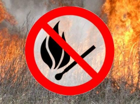 За підпал сухої трави волинянину загрожує штраф і кримінал