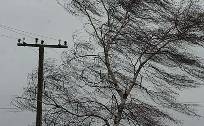 Волинян попереджають про сильні пориви вітру