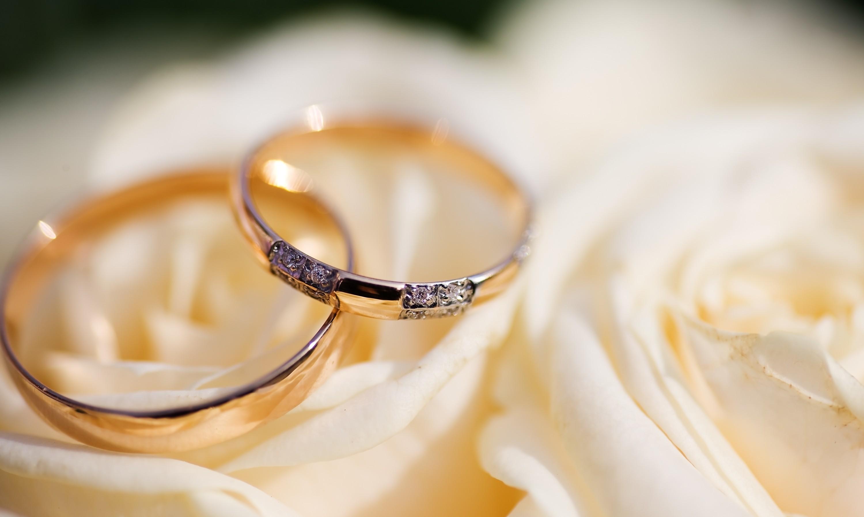 На Волині понад сто пар одружилися за добу