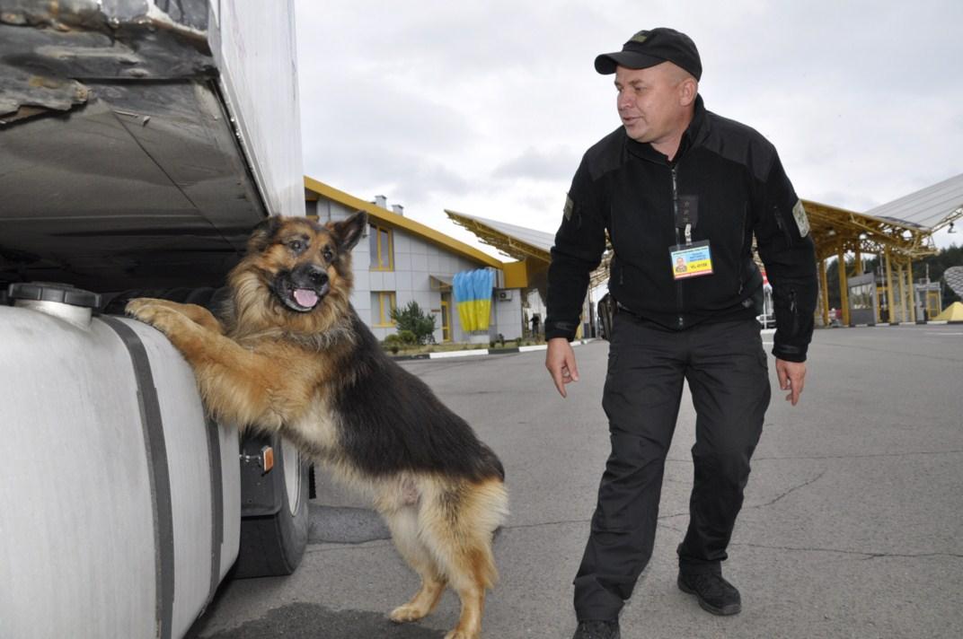 На Волині службові собаки допомогли прикордонникам виявити наркотики
