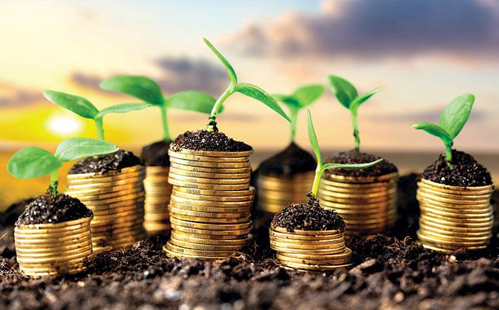 Громади Волині отримали в розпорядження на 26 % більше плати за землю