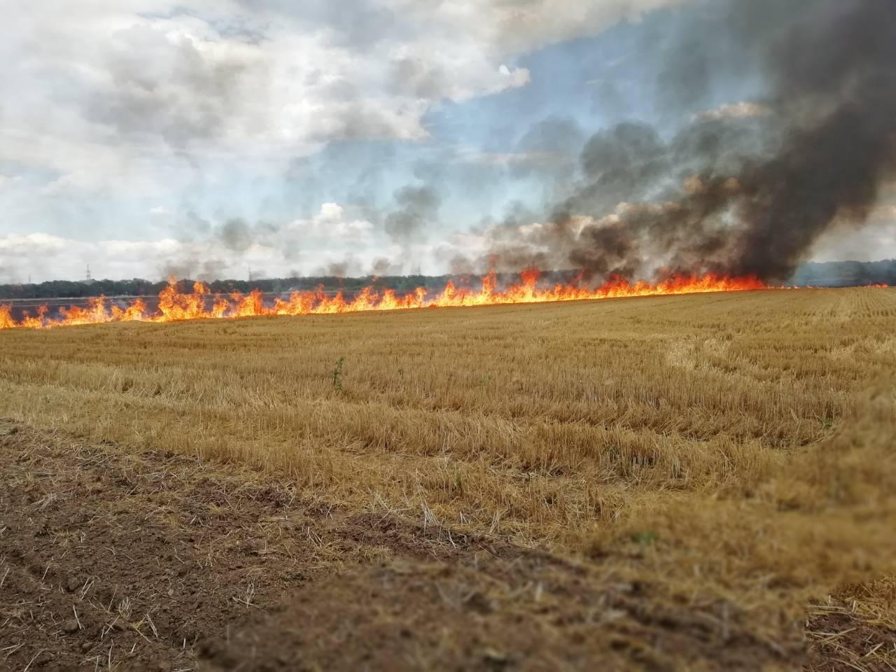 На Волині загасили п'ять пожеж сухої трави