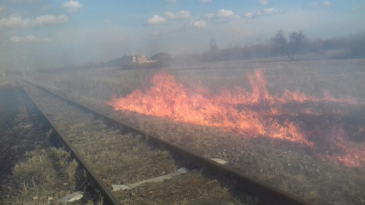 За тиждень на Волині ліквідували 40 загорань сухої трави