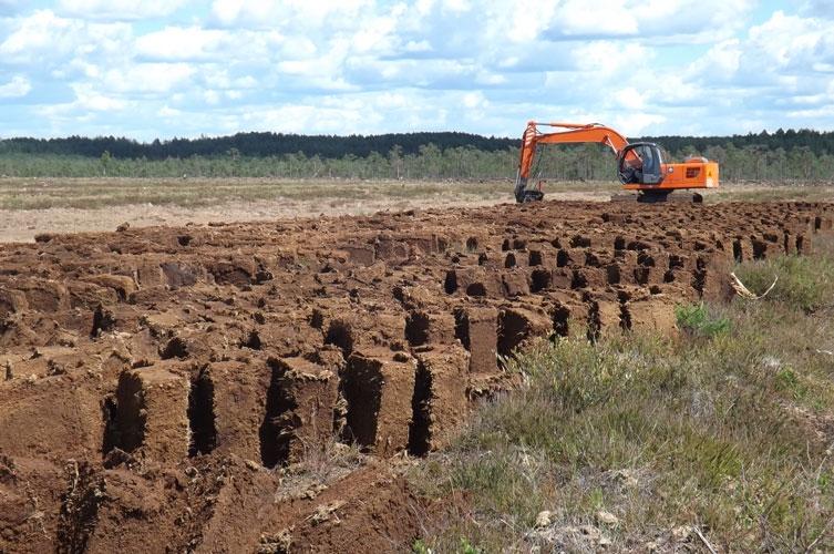"""Волинська ОДА не підтримувала звернень Міненерговугілля про про виділення земель для """"Волиньторфу"""""""