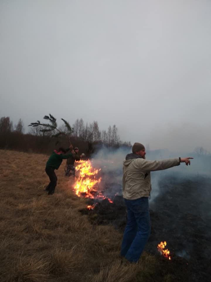 На Волині ледь зупинили пожежу, що підбиралася до села. ФОТО
