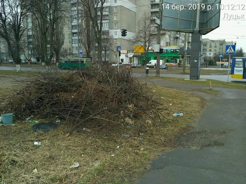 У Луцьку власника занедбаної території змусили поприбирати